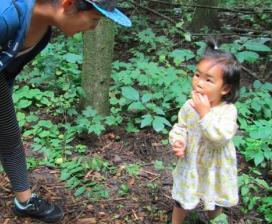 Little Girl Blueberries picking